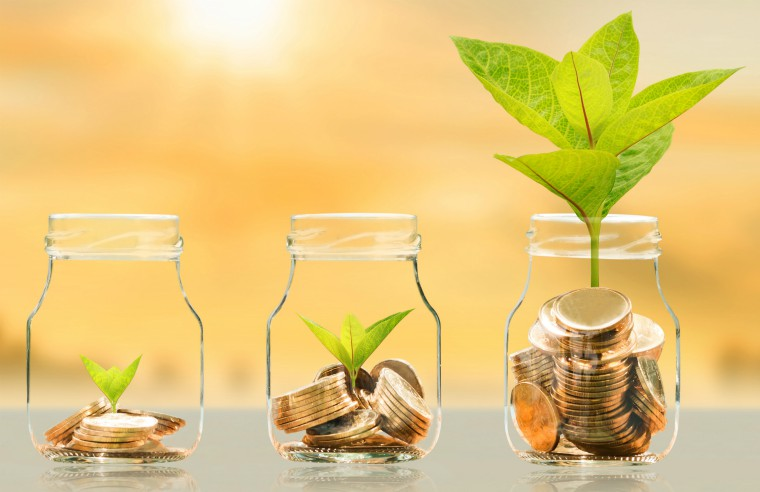 Coin in the bottle and plant growing with savings money