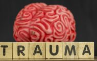 Brain with the word trauma