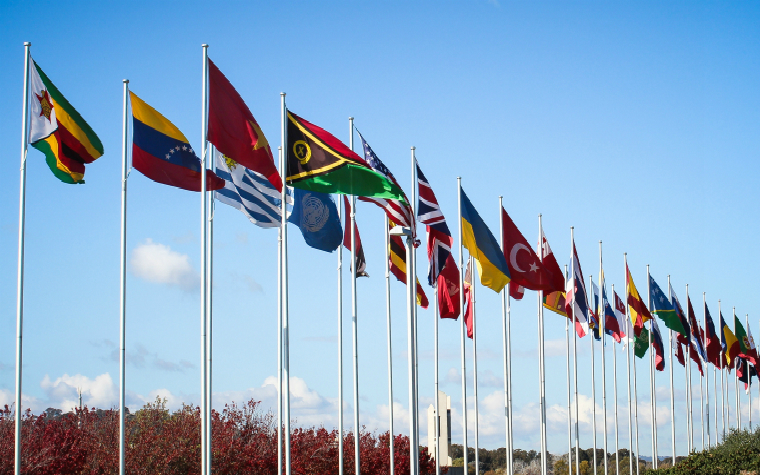 description_of_image_used_in_using_interpreters_in_childrens_services_row_of_world_flags