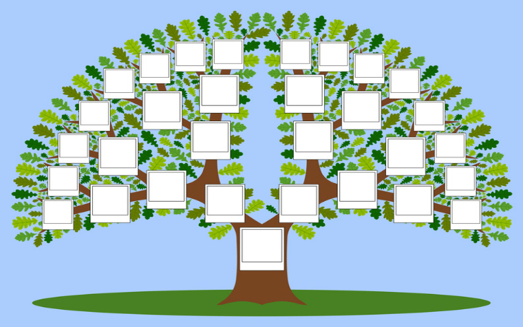 description_of_image_used_in_systemic_practice_guide_illustration_of_family_tree