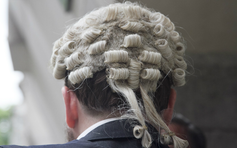 description_of_image_used_in_using_attachment_theory_in_evidence_for_court_quick_guide_wig