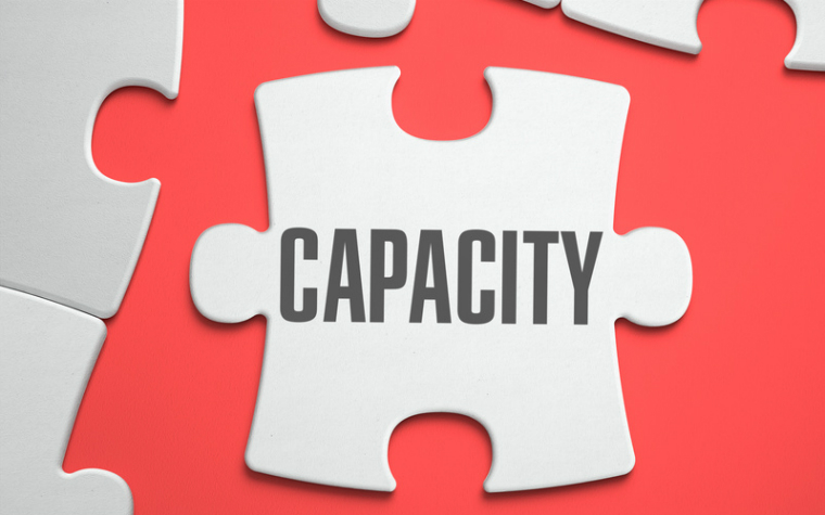 description_of_image_used_in_assessing_capacity_quick_guide_jigsaw_piece_with_word_capacity_tashatuvango_fotolia