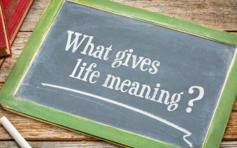 Description_of_image_used_in_spirituality_research_review_board_asking_what_gives_life_meaning