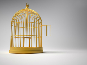 3d render illustration of golden bird cage