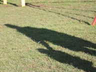 Adult and child shadow
