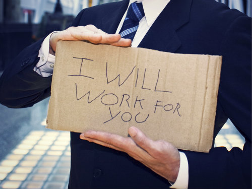 Signs reads I will work for you