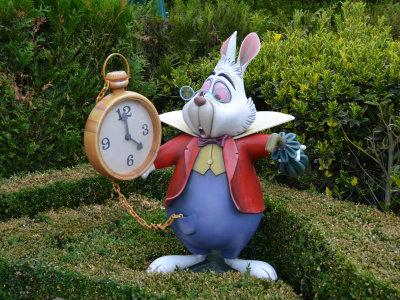 late rabbit