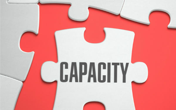 Image of jigsaw piece marked 'capacity'