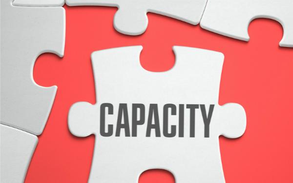 Image of jigsaw piece marked 'capacity'