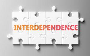 Image of interlocking jigsaw labelled 'interdependence' (credit: GoodIdeas / Adobe Stock)