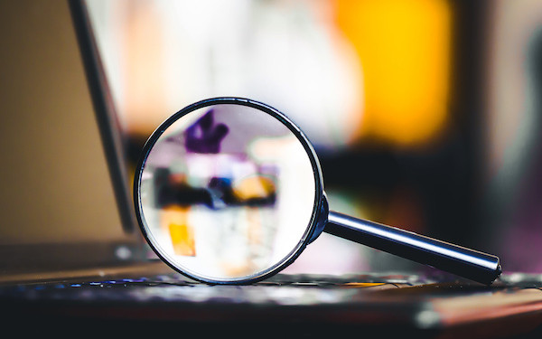 Image of laptop and magnifying glass (credit: Paweł Michałowski / Adobe Stock)