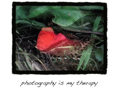 Photography_therapy